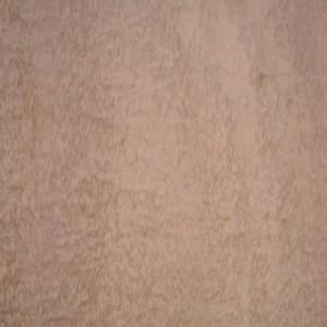 eucalyptus-pom-3