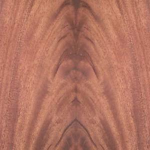 mahogany-crotch