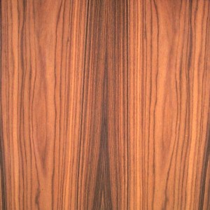 rosewood-santos-fc-8