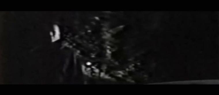 vlcsnap-2019-03-24-23h13m41s171