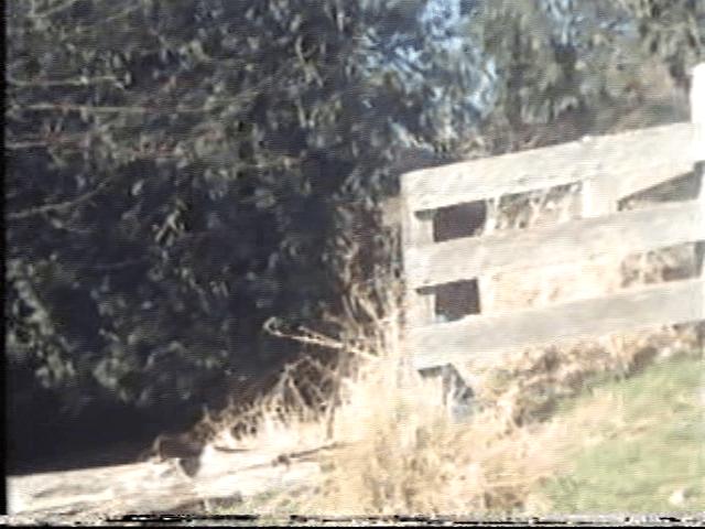 vlcsnap-2020-08-28-01h13m04s200