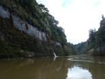 One last shot of the Jurassic-like scenery from the river.