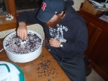 Clay dehydrating blueberries!