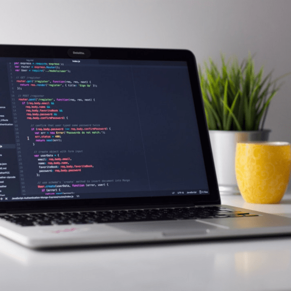 frontend web development for beginners