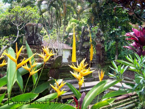 Flowers of Gunung Kawi Temple in Tegalalang, Bali