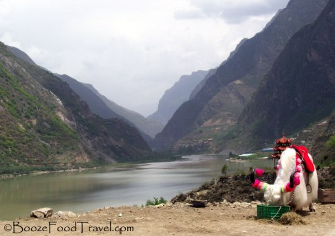 Stopping for yak on the way back to Chengdu