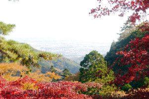 Oyama-View