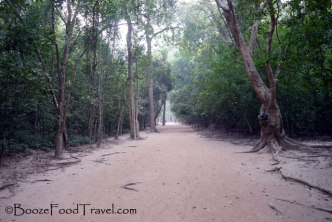 The path leading to Ta Prohm