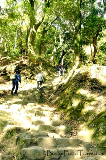 Climbing the steps to Mt. Oyama, Japan
