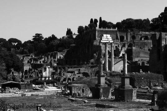 The Roman Forum. So many historic shadows