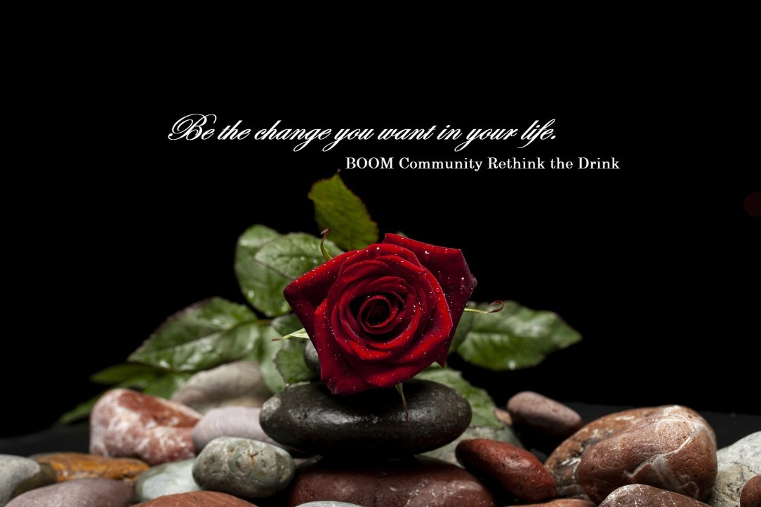 rose on pebbles, related to drinking alcohol