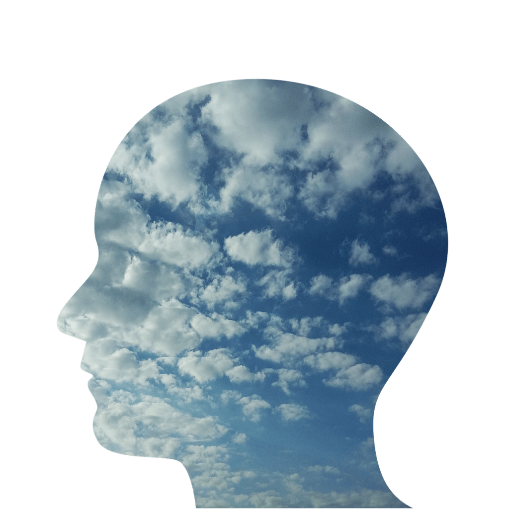 Head with clods to represent mindfullness