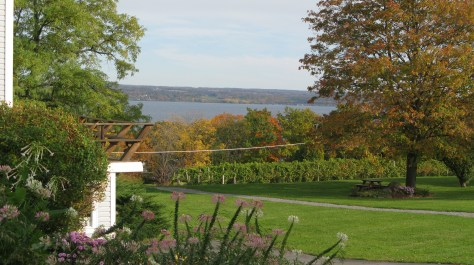 Cayuga Lake from Goose Watch Winery