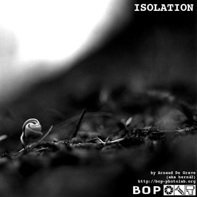 flyer_isolation