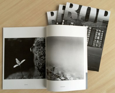 Photo Analogies #2, Isolation by Arnaud de Grave