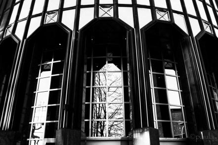 Drazen's reflection in a window