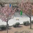 Panoramica del giardino di via San Michele