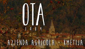 Ota-Logo-2
