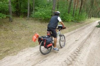 bici ciclomonones