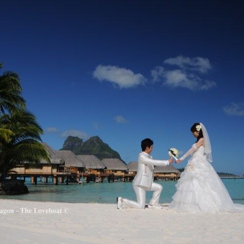 Wedding Pictures+Videos (6)