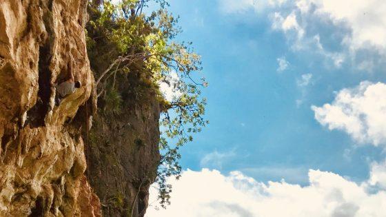 Oren Climbing