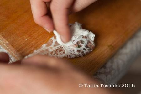 Tania Teschke Photography-9819