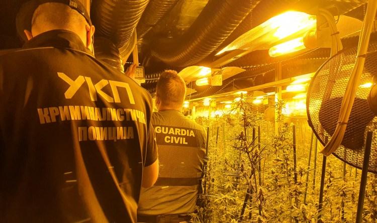 Eurojust coordinates dismantling of Serbian marijuana trafficking network operating from Spain