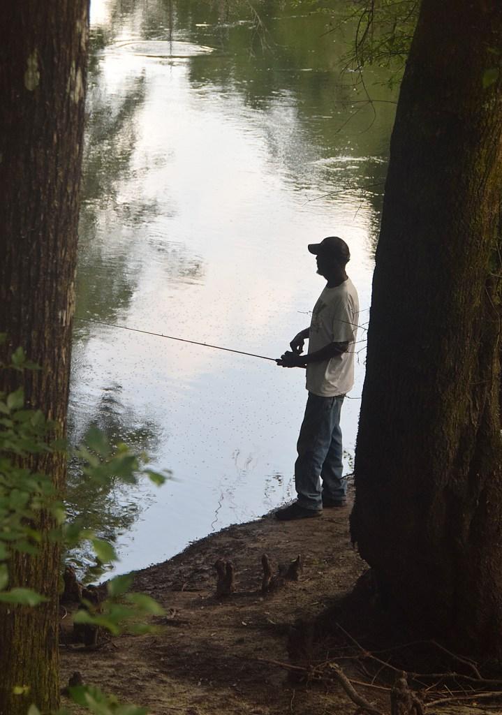 shadow fishing on the bank