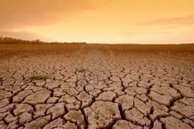 Argentina: De granero del mundo a tierra arrasada