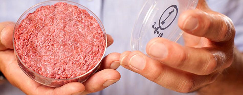 carne_in_vitro_portada
