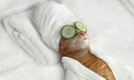 Instrucciones para relajarte