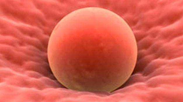 Los pros y los contras de congelar óvulos