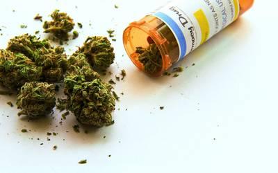 Investigación Cannabis: qué se sabe y que no sobre su utilización en autismo