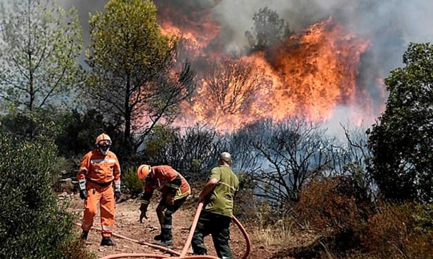 Incendios sin control: ¿cómo se desfinanció la prevención contra el fuego?