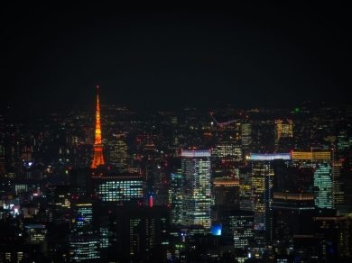 Minato Skyline, Tokyo