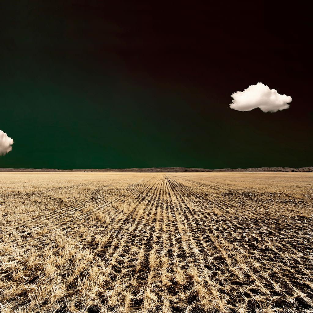 Art-of-Farmland-No52_mini