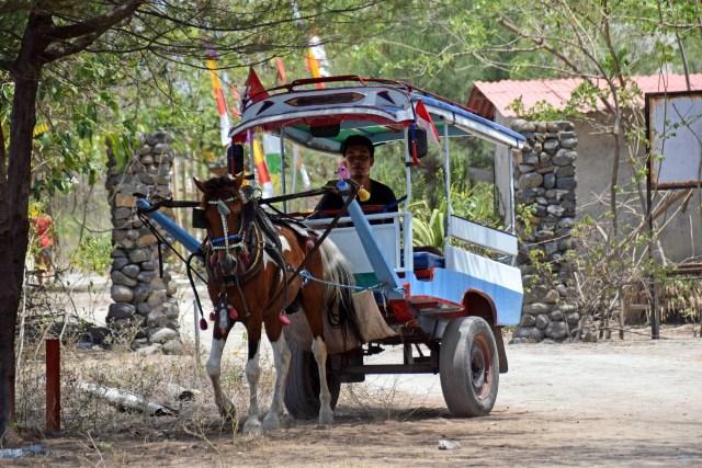 Horse carriage on Gili Island