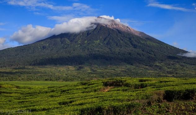 Mt. Kerinci, Sumatra