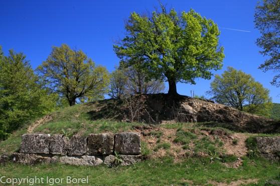 Dacian fortress: Cetatea Daciâ Căpâlna