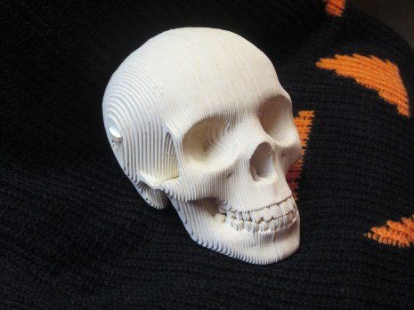 Cardboard Safari skull