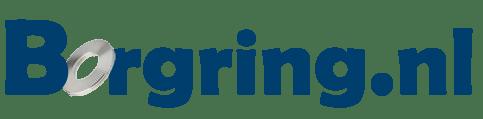 Logo borgring