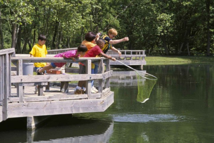 adults-and-children-enjoy-afternoon-of-fishing-at-pond-725x485