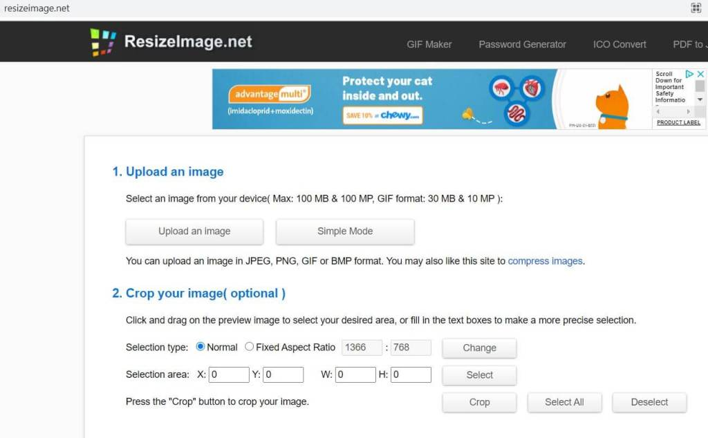resize image for free site builder