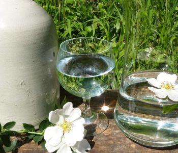Trinkkur mit artesischem Quellwasser Wirkungen auf Physis und Psyche