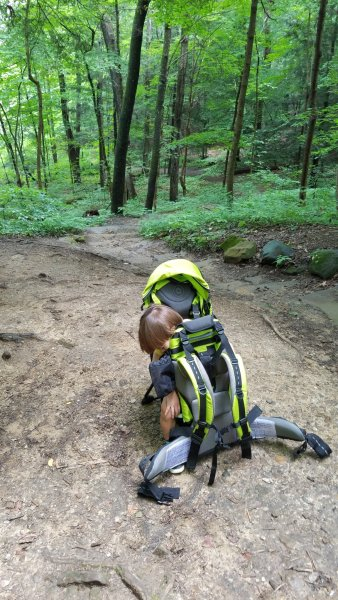 KiddyUSA Adventure Pack Carrier - Hocking Hills Park