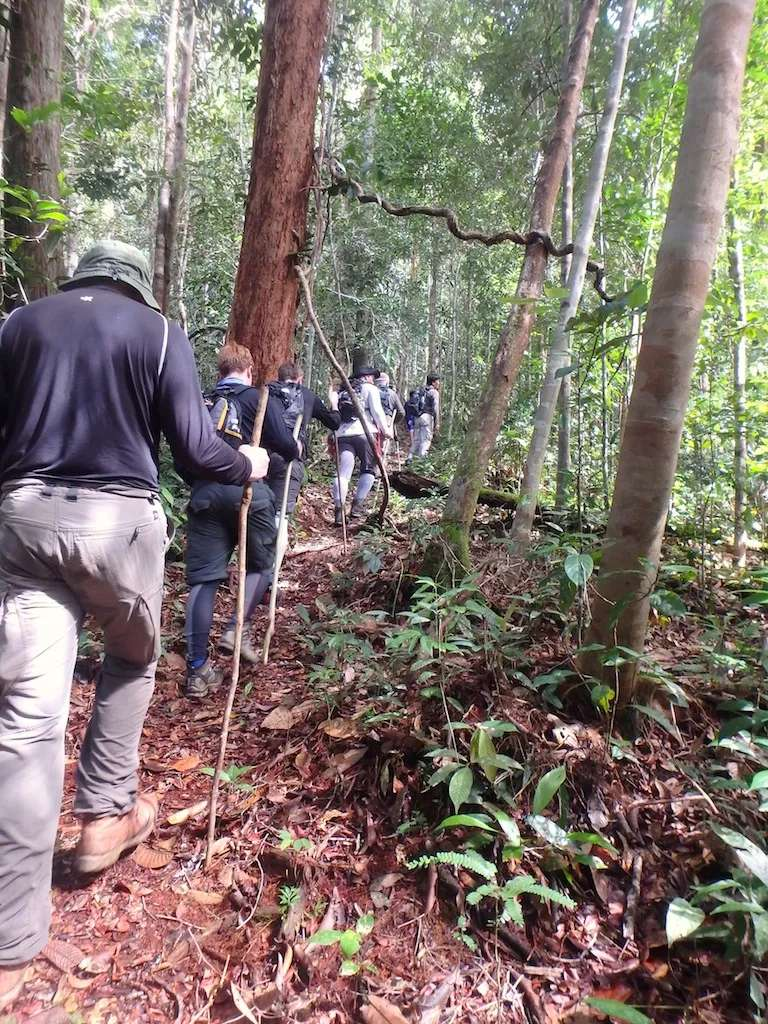 Trekking at Lubok Kasai Jungle Camp