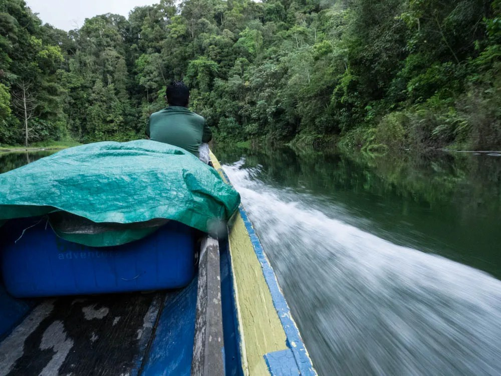 Upriver Adventure With Borneo Adventures