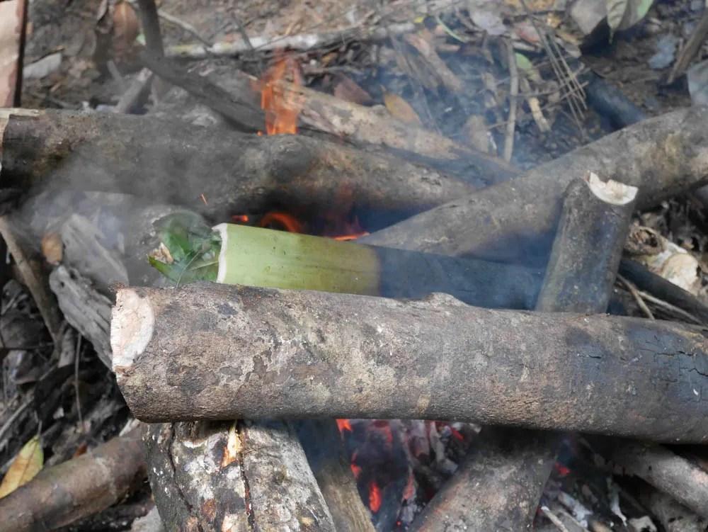 BBQ Bamboo Tubes
