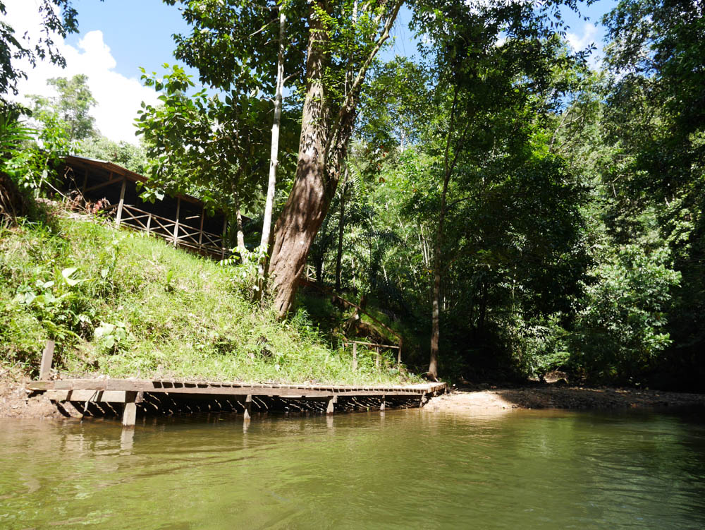 Lubok Kasai jungle camp from the river