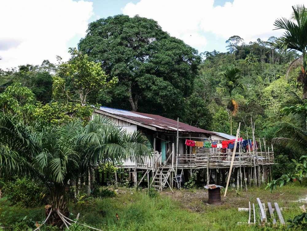Jambu longhouse
